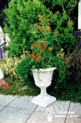 Betoninė vaza